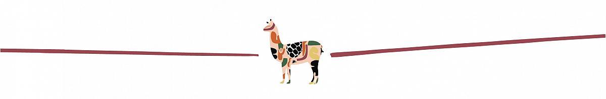 cintillo alpaca 2